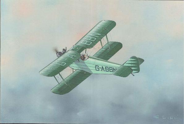 De Havilland DH60X Moth | Guillermo Coll