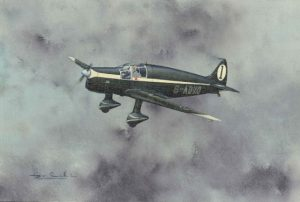 De Havilland DH85 Leopard Moth | Guillermo Coll