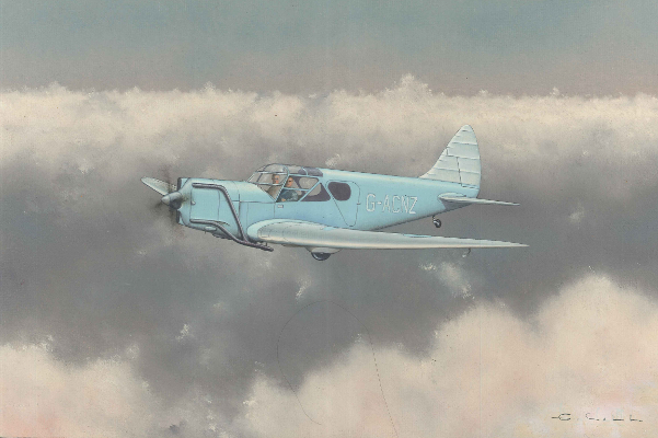 De Havilland DH94 Moth Minor | Guillermo Coll