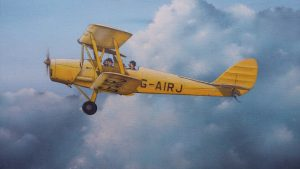 De Havilland DH82 | Guillermo Coll