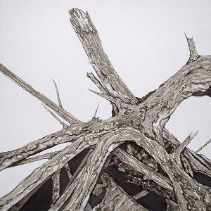 Tala (felling) | Guillermo Coll