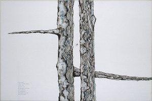 Haiku (I) | Guillermo Coll