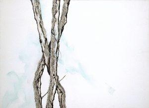 Zen | Guillermo Coll