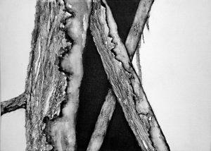 Composición (II) | Guillermo Coll