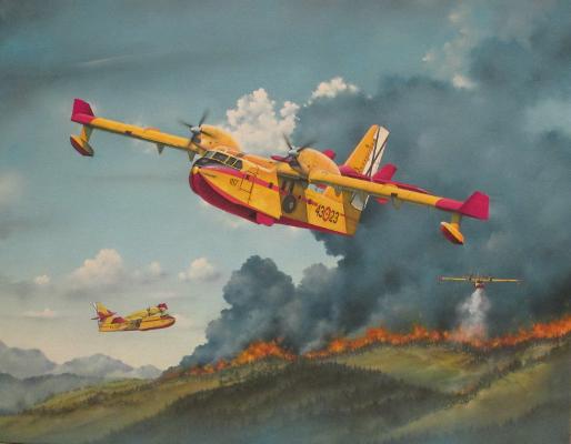 Los Profesionales Canadair CL-215T | Guillermo Coll