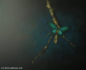Sin título (Papilio zalmoxis) | Guillermo Coll