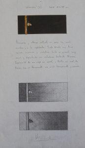 "Estudio para ""Minimal"" | Guillermo Coll"