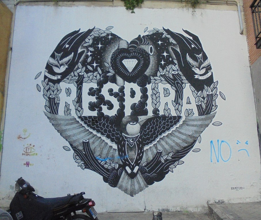 Guillermo Coll | Murales