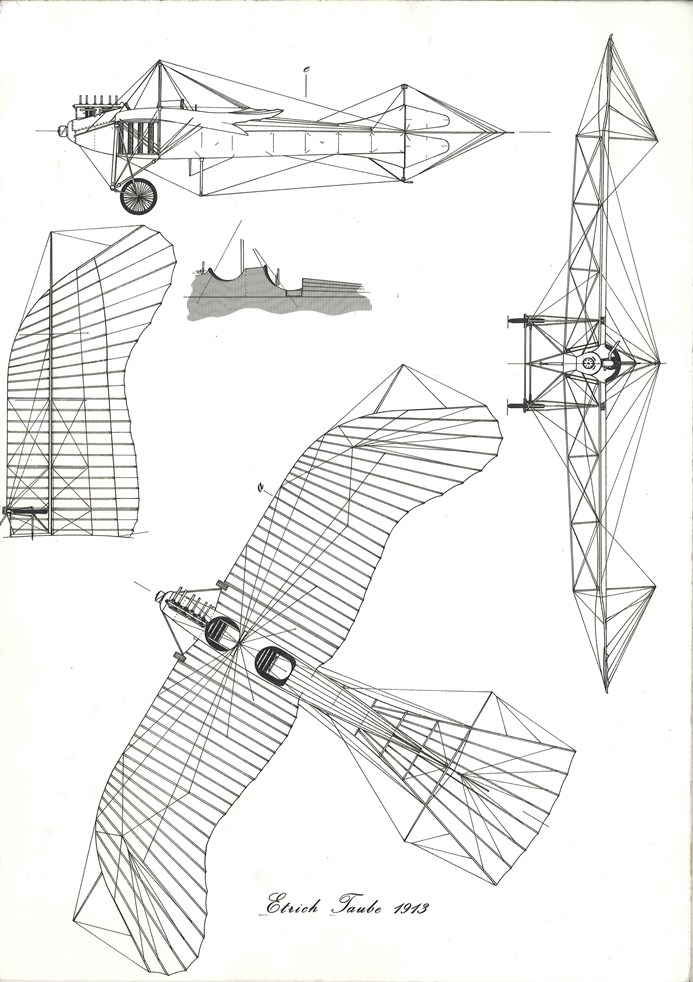 Guillermos Coll | Scale drawings