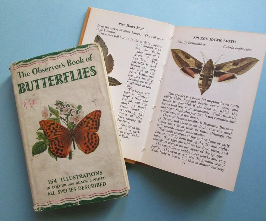 Book of butterflies
