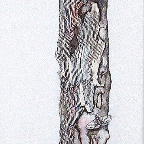 Haiku (III) | Guillermo Coll