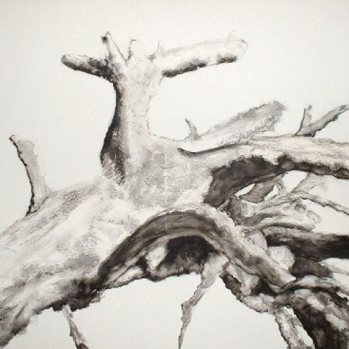 El arbol seco (dried tree) (I) | Guillermo Coll